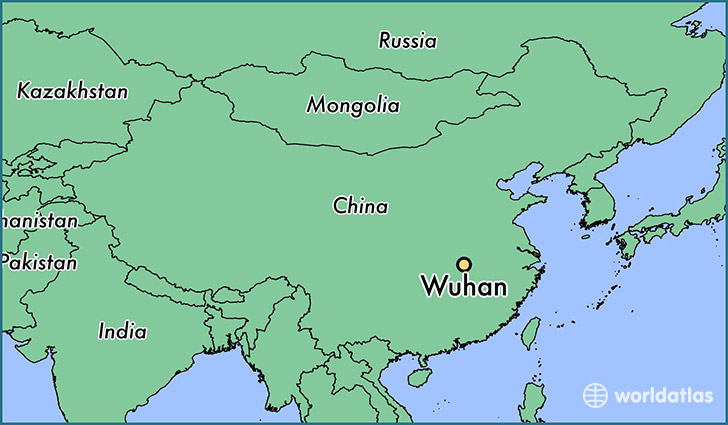 The+Spreading+Issue+of+the+Wuhan+Coronavirus