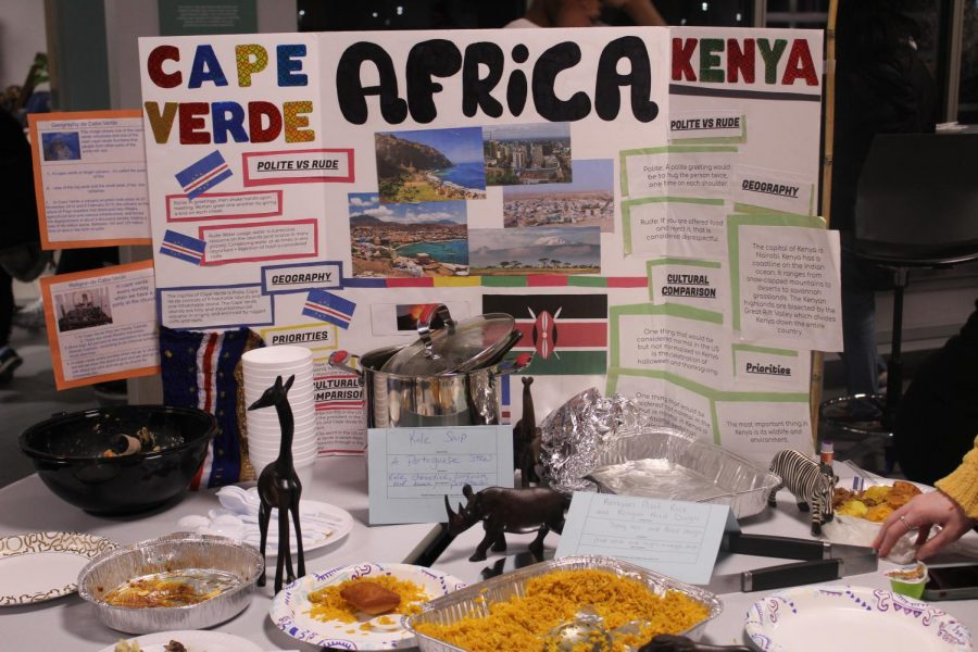 The Africa display at culture fair.